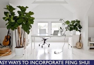Easy ways to Feng Shui for your home thumbnail